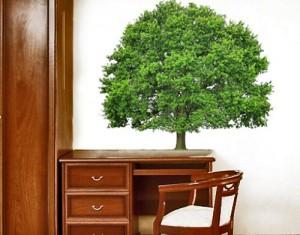 Wandtattoo mehrfarbig No.393 Sommerlinde 90x78 cm WandSticker, Wandtattoos Günstig, Billig, Preiswert, Kinderzimmer, Baum, Sommer, Linde, Pflanze, Natur