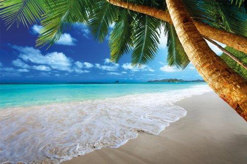 Fototapete Strand und Meer Palmen