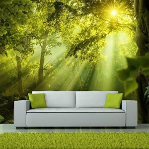 Vlies Fototapete 250x175 cm ! Top - Tapete - Wandbilder XXL - Wandbild - Bild - Fototapeten - Tapeten - Wandtapete - Wand - Wald Natur Landschaft c-A-0077-a-a
